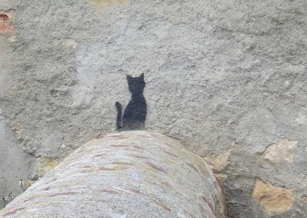 La sombra del gato